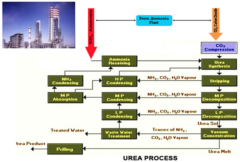 representative basic flow diagrams of typical hydrocarbon feedstock based  ammonia and urea process layouts are shown below  highly optimized  technological